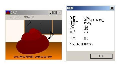 20130205.jpg